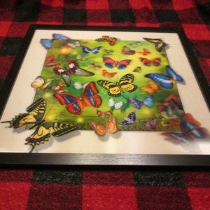"new 3-D butterfly 16.5"" x 16.5""picture"
